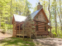 Bear Creek Cabins