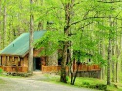 Wilderness Lodge