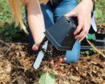 a girl planting a start