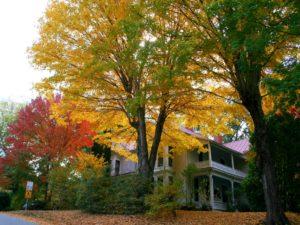 Sunnybank in Fall
